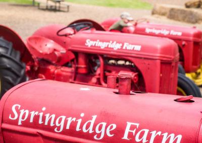 Springridge Farm_Main - 266