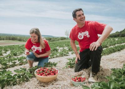 Sprinridge Farms - opt4 - 2